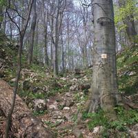 Garadna,Örvény-kő,Magos-kő,Udvarkő barlang,Majális park