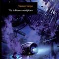 Vernor Vinge - Tűz Lobban a Mélyben