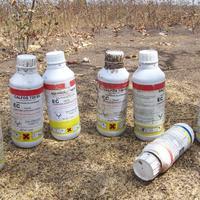 Mi lesz a fel nem használt (méhgyilkos) vegyszerek további sorsra?