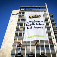 Az LMP-s képviselőasszonyok a méhpusztító vegyszerek után érdeklődnek.