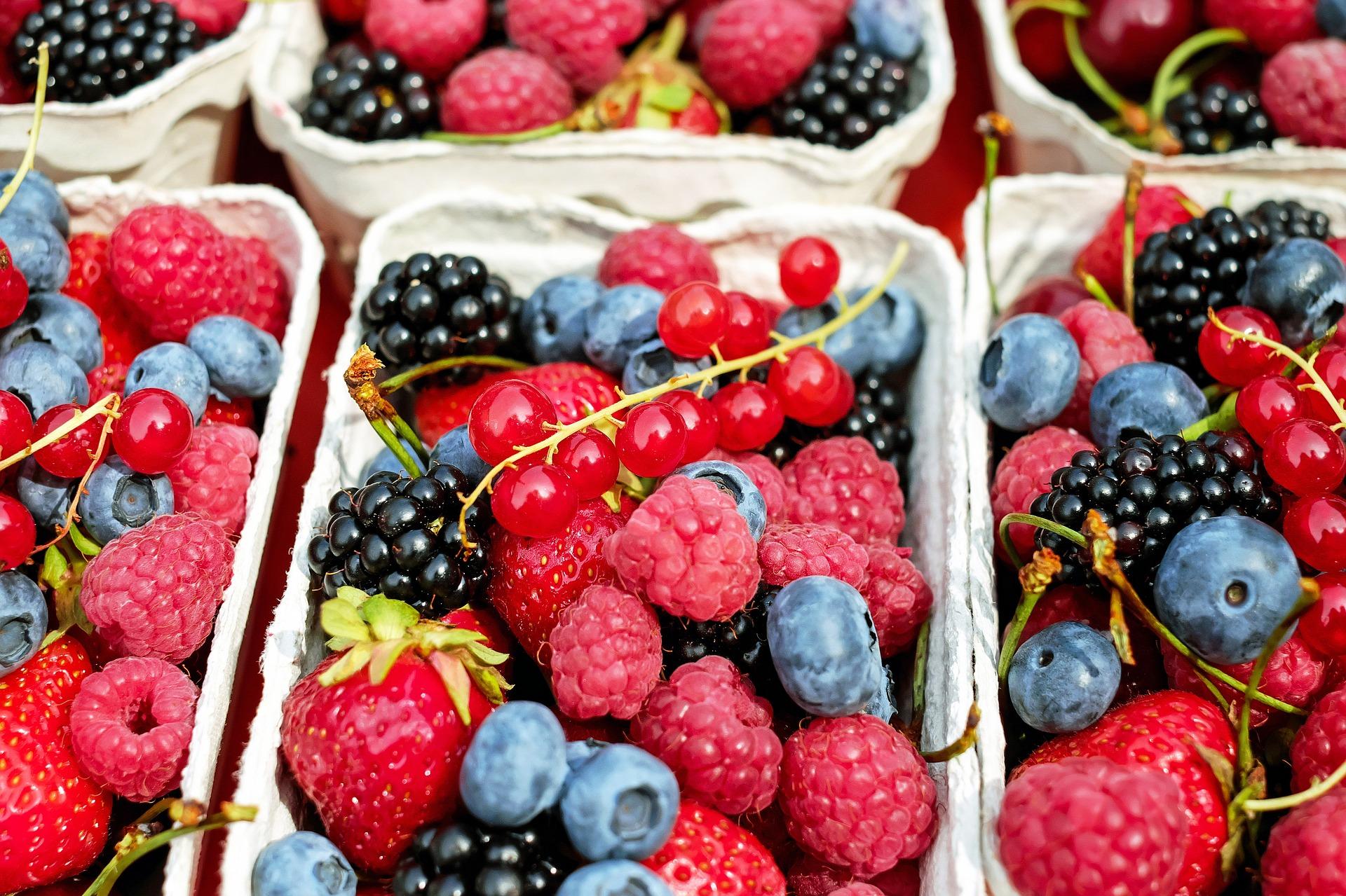 berries-1546125_1920.jpg