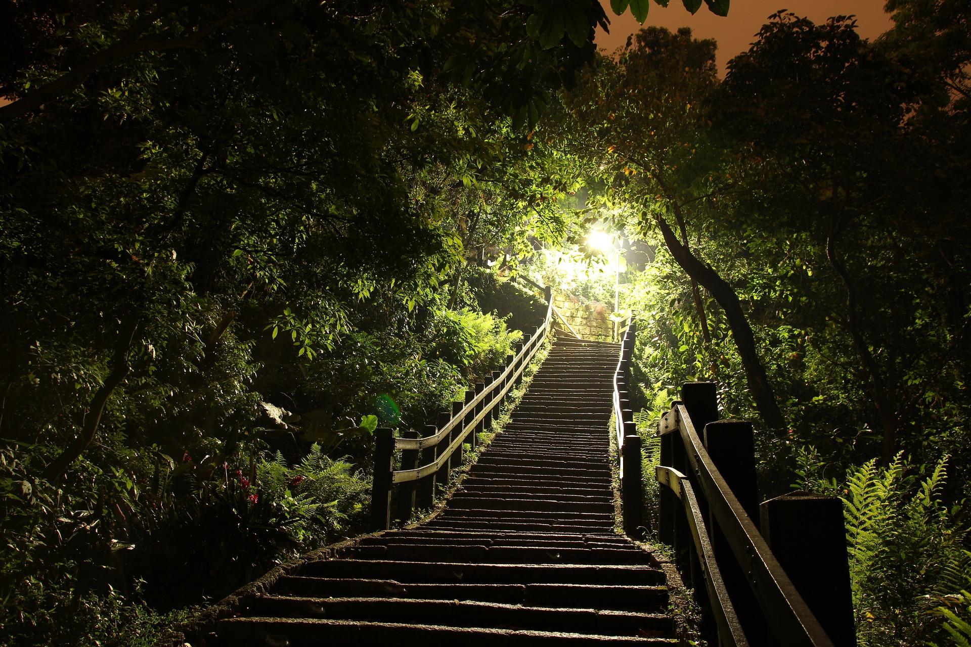 light-2401495_1920.jpg