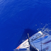 Barcelona World Race, huszonkilencedik nap - déli vizeken