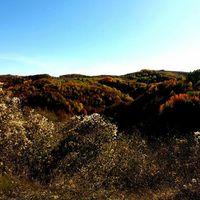 Balkáni ősz 21