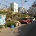 Libanon, április (8)