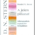 Daniel N. Stern: A jelen pillanat