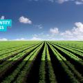 Trendi zöld innovációk Izraelből
