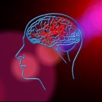 Izraeli kutatók kimutatták, hogy a globális felmelegedés növeli a stroke kockázatát