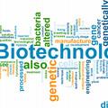 Izraeli biotechnológiai körkép