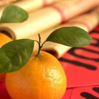Izraeli mandarin export Kínába