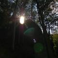 Itt vagyok mint Fény, Élet és Erény !