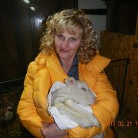 Gyula, a ma született bárány