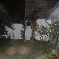 2014.09.06.-án este a szegedi szer után az udvaromban már vártak