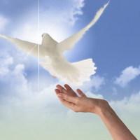Mert számunkra fontos a jövő, álljunk a béke szogálatába most !