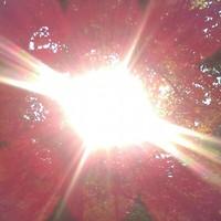 Pater Noszter Párcium  mantra után kinyíló Nap kapu