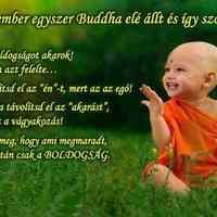 Buddha tanítása a teremtésnek