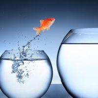 Nagyon fontos hogy elolvasd, ha részt szeretnél venni a nagy változásban