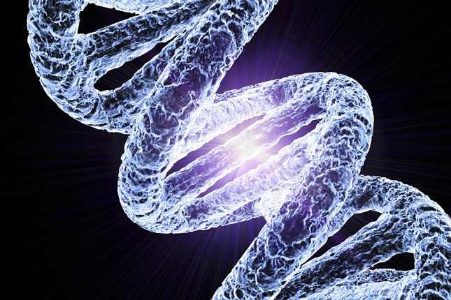 dns-kromoszoma-illusztracio_1369791925.jpg_645x430
