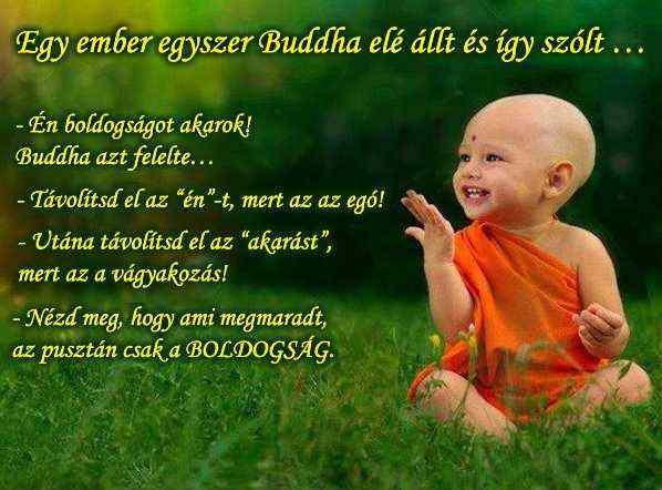 kis_buddha_1388491220.jpg_598x442