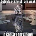 Jézus, mutass be engem magamnak!