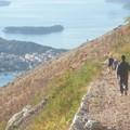 Az egekbe szöknek az árak Dubrovnikban