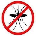 Amikor a geek szúnyogot kerget