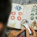 A Voynich-rejtély