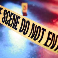 Arcfelismerő technológia a bűnüldözésben