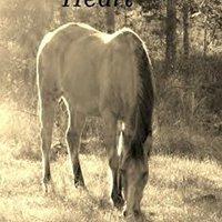//FULL\\ To Tame A Wild Heart. Compra Value KZgunea range changes market