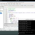 C++ programozás kezdőknek - tömbök, ciklusok