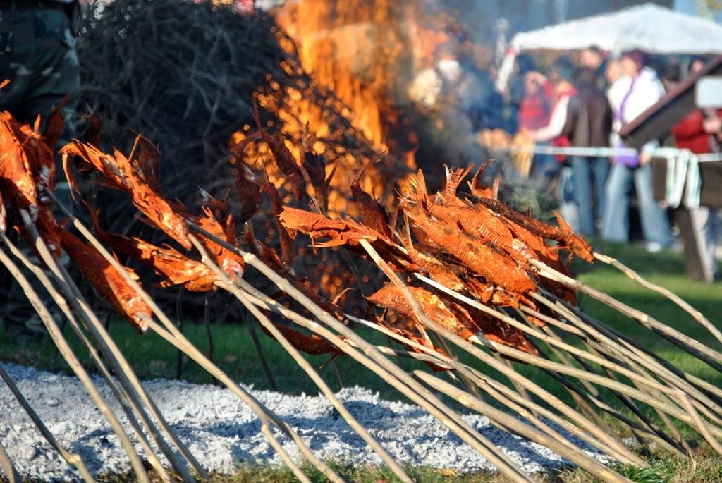 garda fesztivál 2010-6.JPG