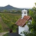Legszebb panorámájú borteraszok a Balatonnál