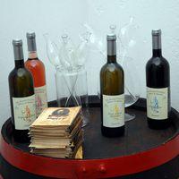 Boros kincsvadászat és szüreti fesztiválok az Őszi Nyitott Balaton kínálatában