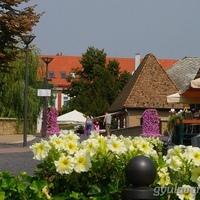 Gyula a legvirágosabb város!