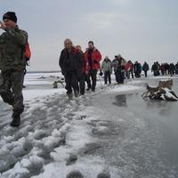 Téli kalandra fel! Fedezd fel Te is a Tisza-tó téli varázslatos világát!