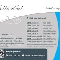 A Hello Hal, tiszai halak falatozója programajánlatai