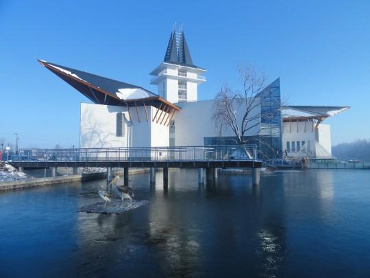téli Ökocentrum, jeges tó.jpg