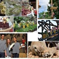 Interaktív kézműves piac? Állatkert? Vidámpark? Egy kicsit mindegyik.