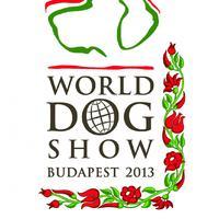 Egyszer volt Budán kutyavásár...?!