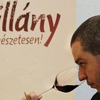 Villány a VinCe Budapest 2013-on!