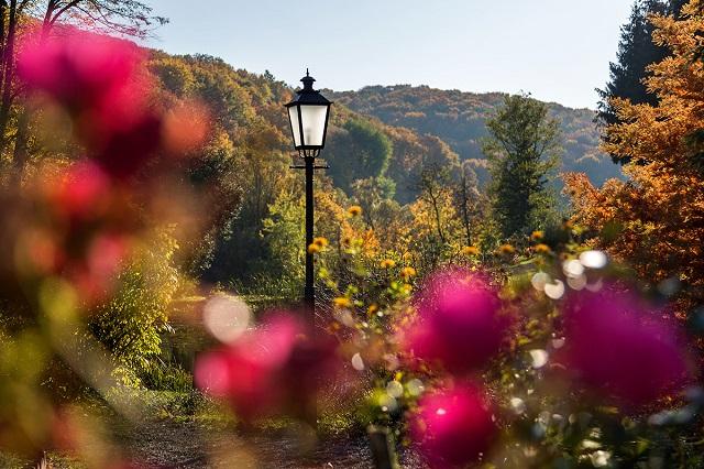 arboretum02.jpg