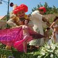 Ismét virágba borul Debrecen