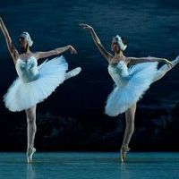 Szentpétervári Balett - Hattyúk Tava