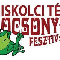 Több mint 200.000 látogató a miskolci Kocsonyafesztiválon