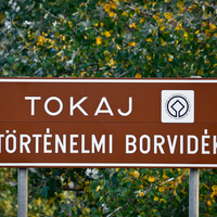 Csütörtöktől 9 fantasztikus program Tokaj-Hegyalján!