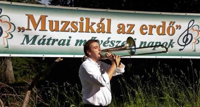 muzsikal_az_erdo_5.jpg