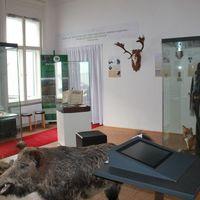 Új kiállítással gazdagodott Veszprém, a királynék városa
