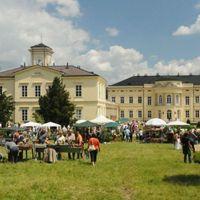 Európai Dísznövény és Kertművészeti Napok