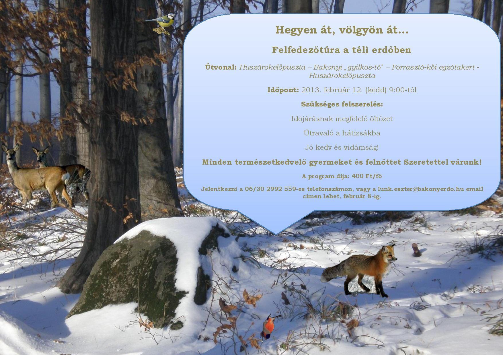 februar-page-001_1360222249.jpg_1754x1240