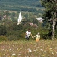 Virágzó Nyugat- Dunántúl III.